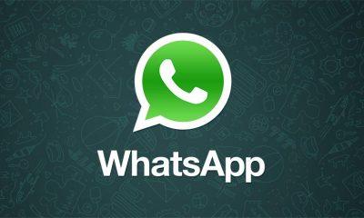 whatsapp citazioni