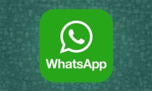 WhatsApp: presto potremmo creare e inviare video come GIF