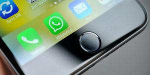 WhatsApp per iOS si aggiorna ed introduce interessanti novità